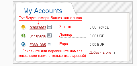 PerfectMoney-my-accounts